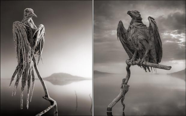 Мертвое озеро Натрон, каменные изваяния