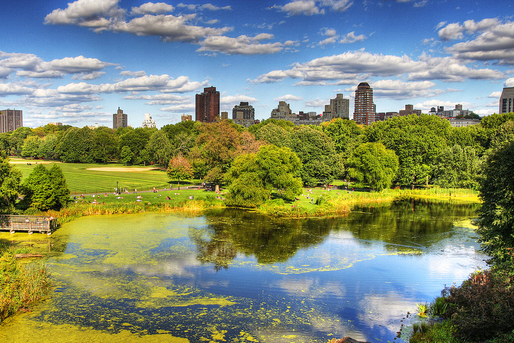 Central Park в Нью-Йорке