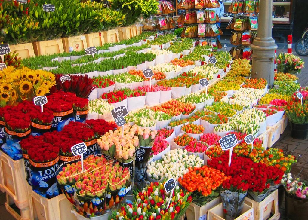 Амстердамский рынок цветов - Bloemenmarkt