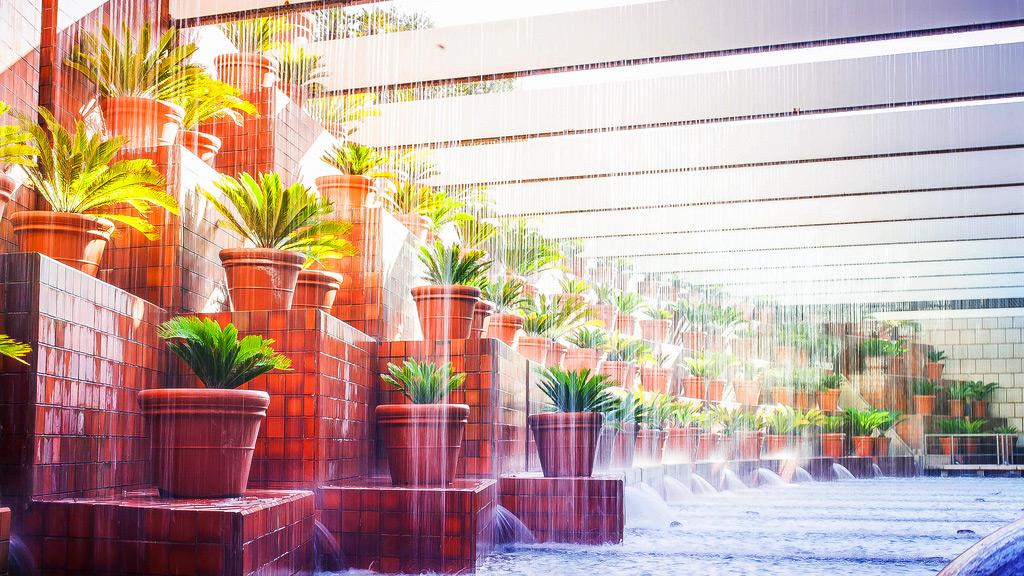 Hotel Arts Rain
