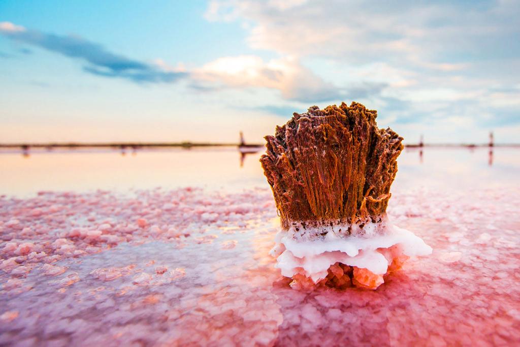 Соляные образования озера Сасык-Сиваш