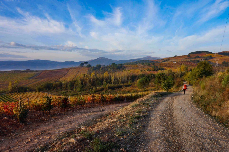 Дорога по маршруту Камино де Сантьяго