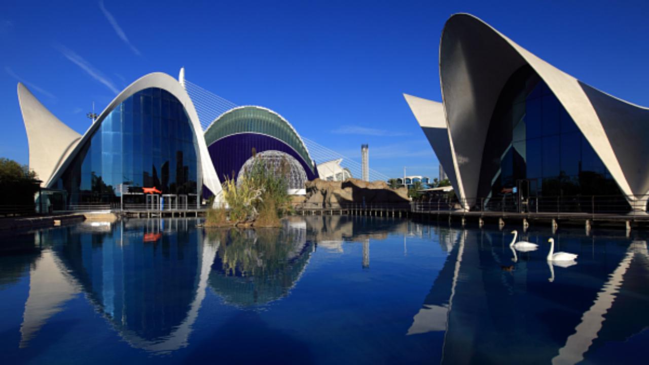 Океанариум в Городе наук и искусств в Валенсии