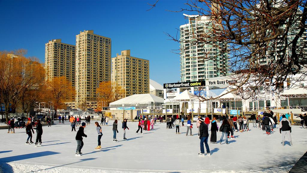 Культурный центр Harbourfront Centre в Торонто