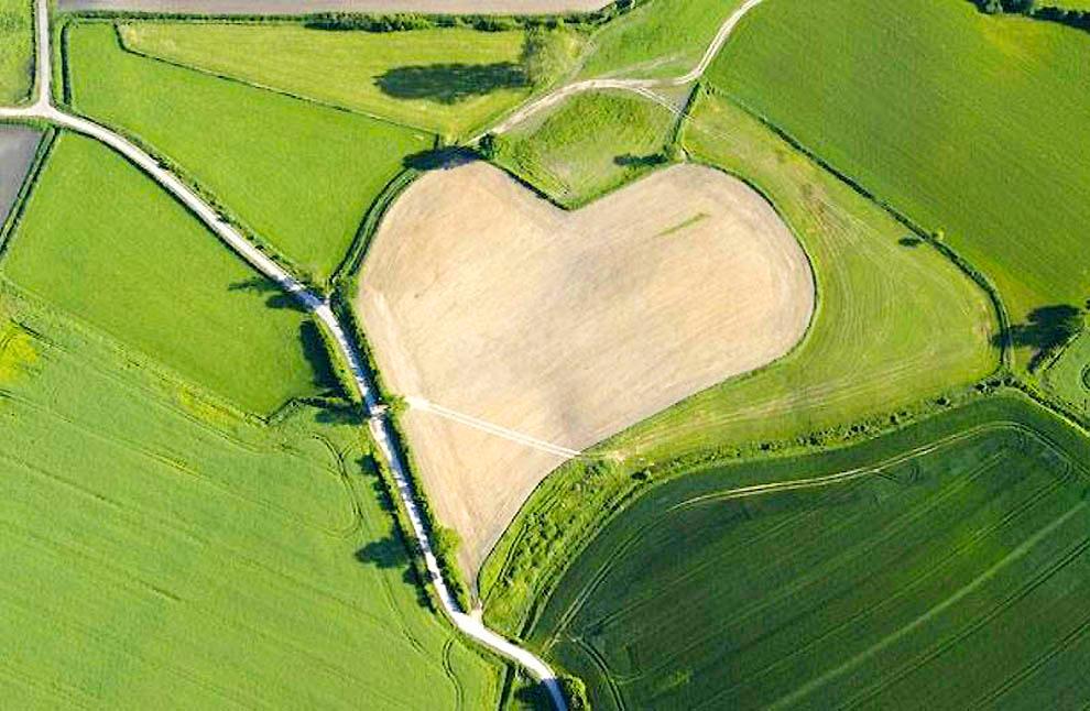 Луг в форме сердца, Германия