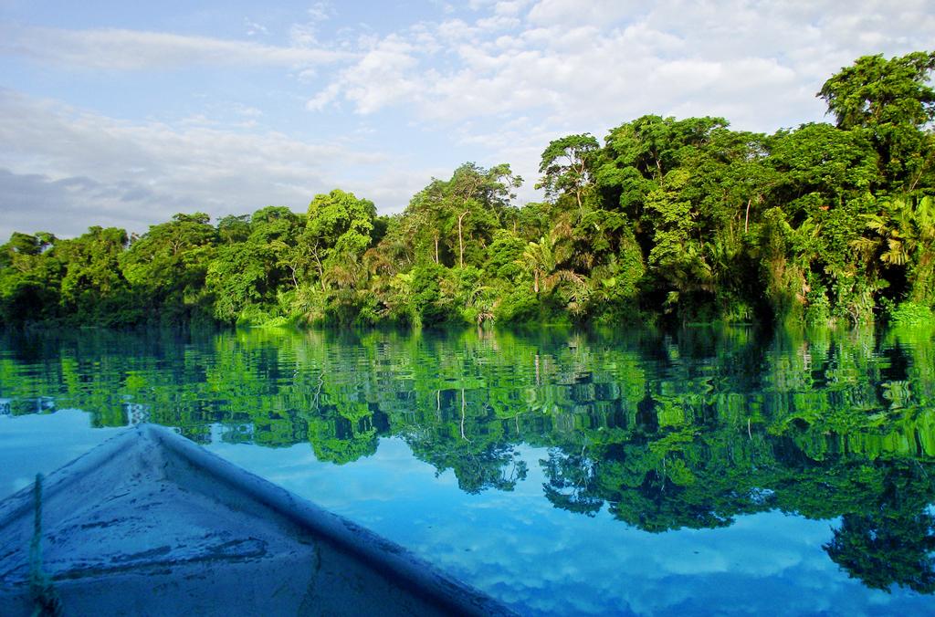Национальный парк Тортугеро, Коста-Рика