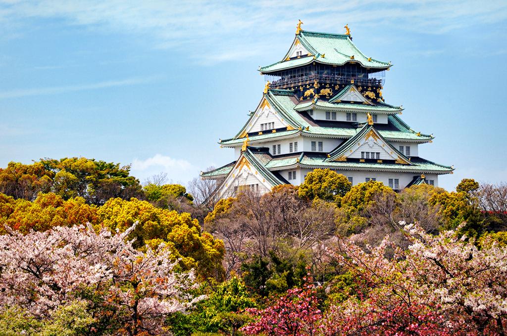 Цветение сакуры возле Замка в Осаке, Япония