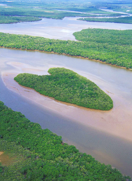 Остров на реке Ваза-Баррис, Бразилия