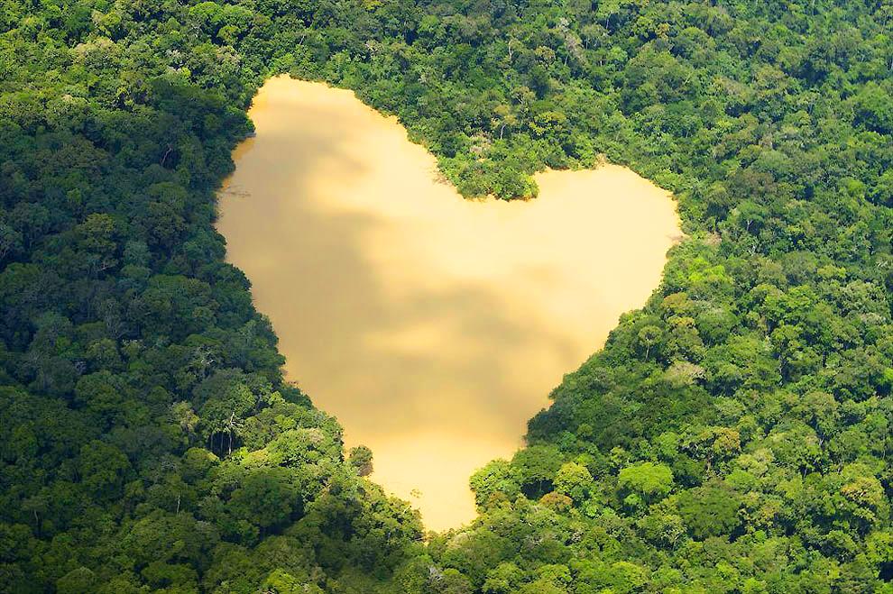 Озеро в джунглях Амазонки