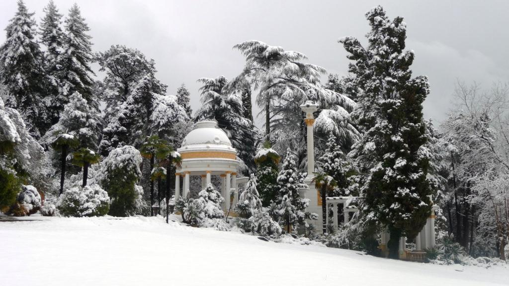 Парк Дендрарий в Сочи зимой