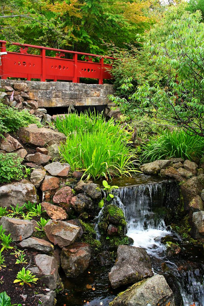 Королевский ботанический сад, Chinese Hillside, Эдинбург