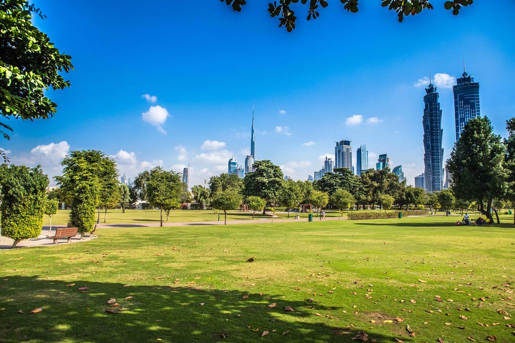 Safa Park в Дубае