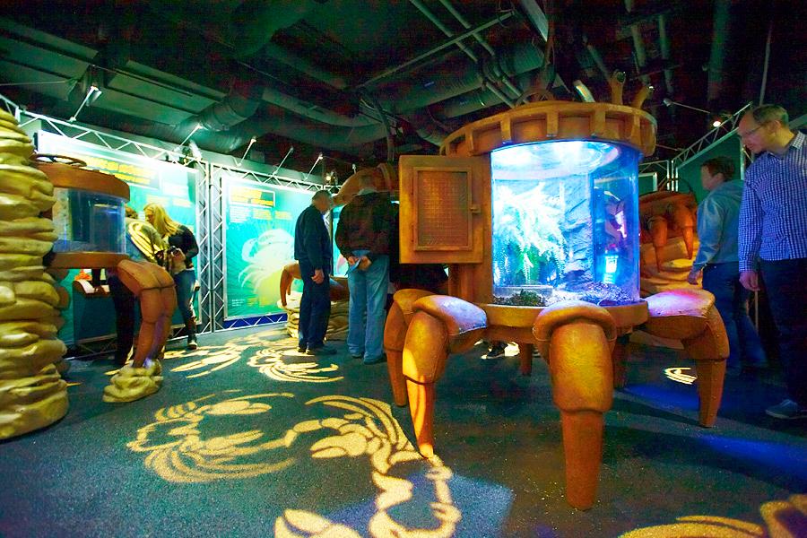 Океанариум Sea Life в Хельсинки