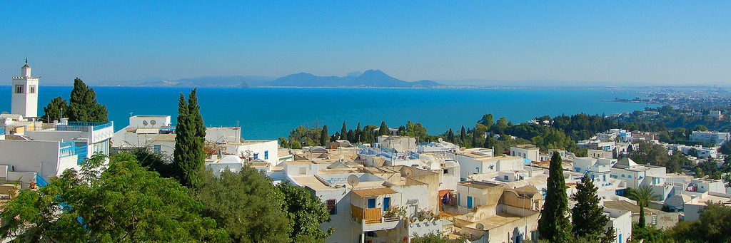 цвет тунис фото