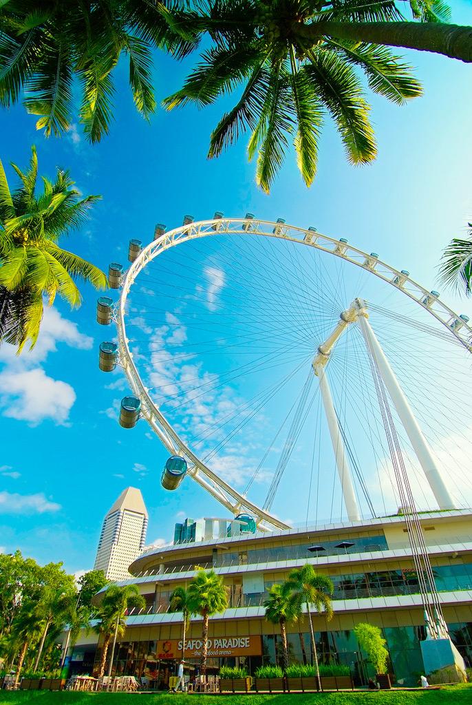 Колесо обозрения Singapore Flyer