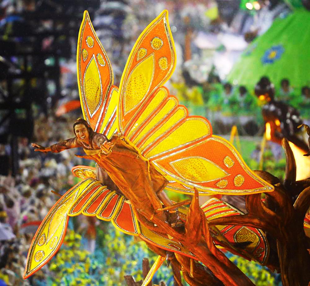 Карнавал в Рио 2015, Бразилия