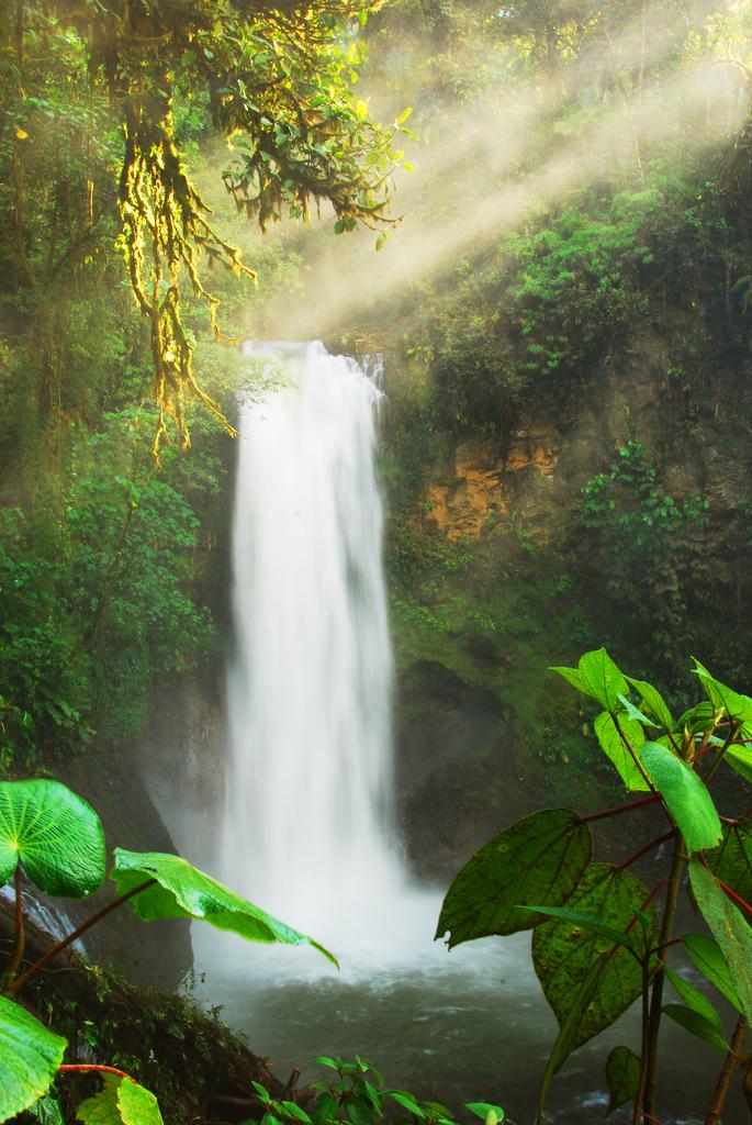 Водопад Ла-Пас, Коста-Рика