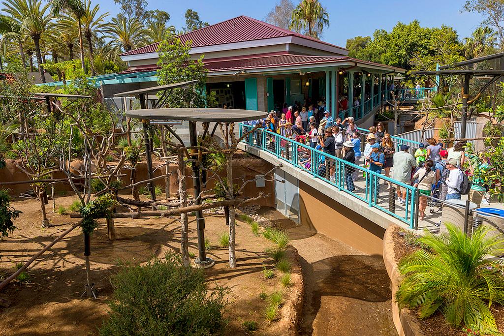 Зоопарк Сан-Диего (San Diego Zoo)