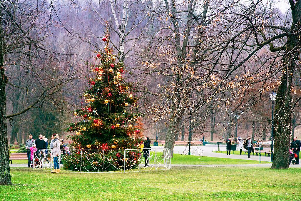 Рождество в Бернардинском саду