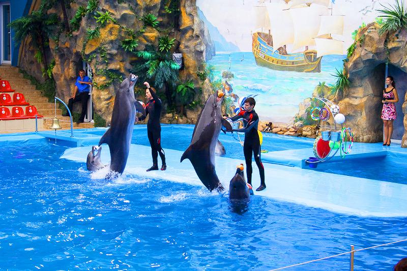 Дельфинарий Немо в Харькове