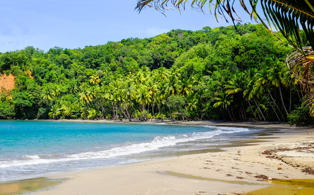 Берег острова Доминика