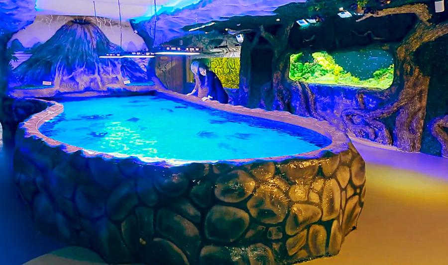 Киевский океанариум