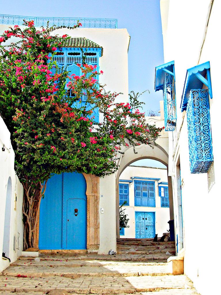 Деревня Сиди бу Саид, Тунис