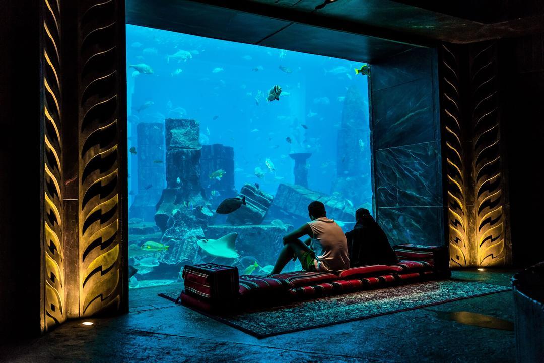 Гостиница под водой дубай вторичное жилье в черногории