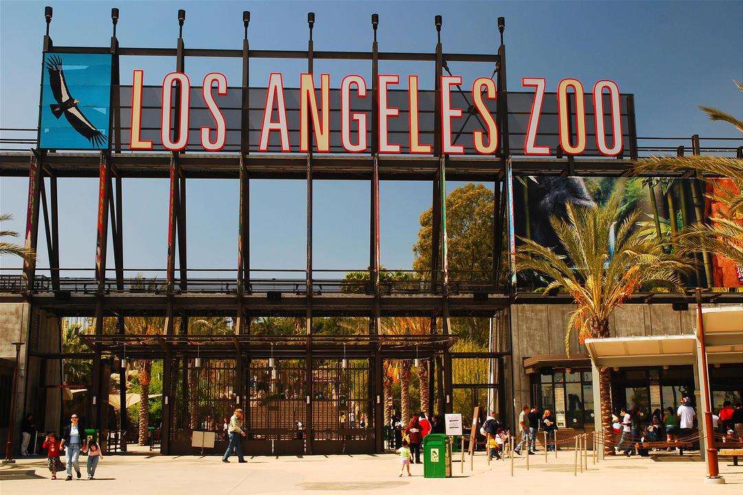 У входа в зоопарк