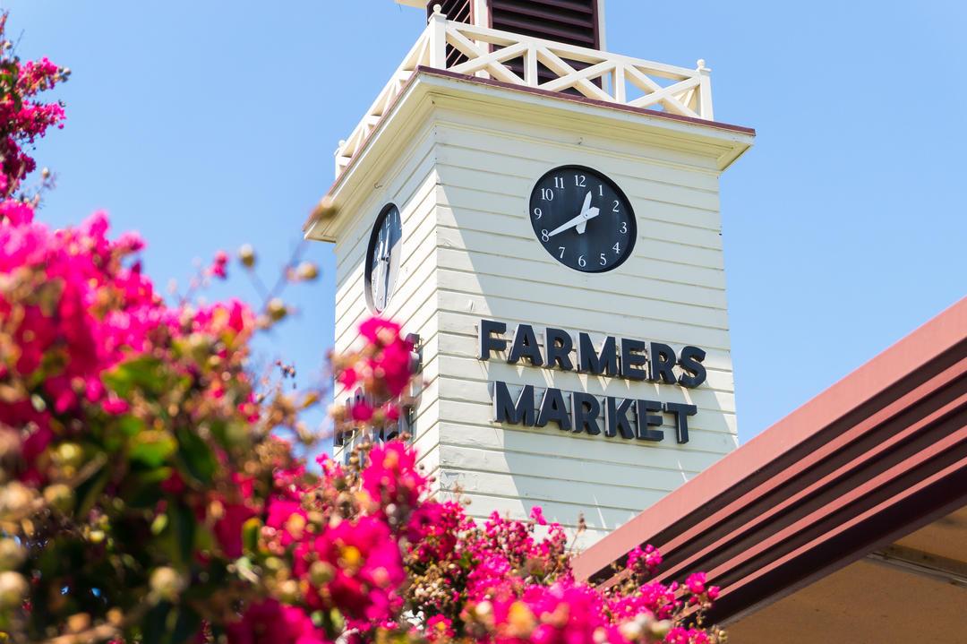 Белая башня фермерского рынка с часами