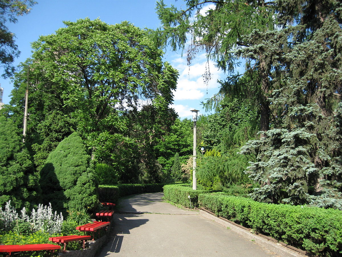 вполне достаточно фоминский ботанический сад фото в киеве словно пропитан