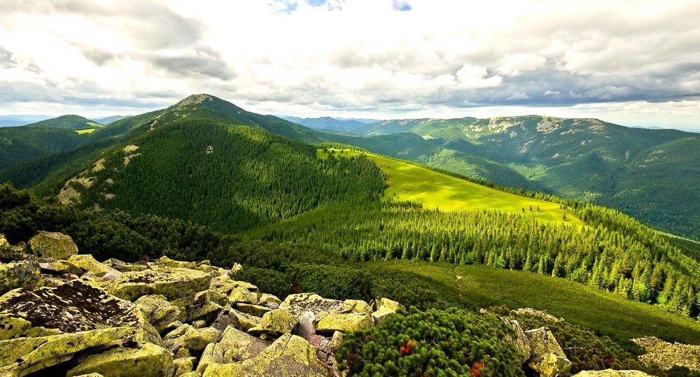 Вид из горы Хомяк