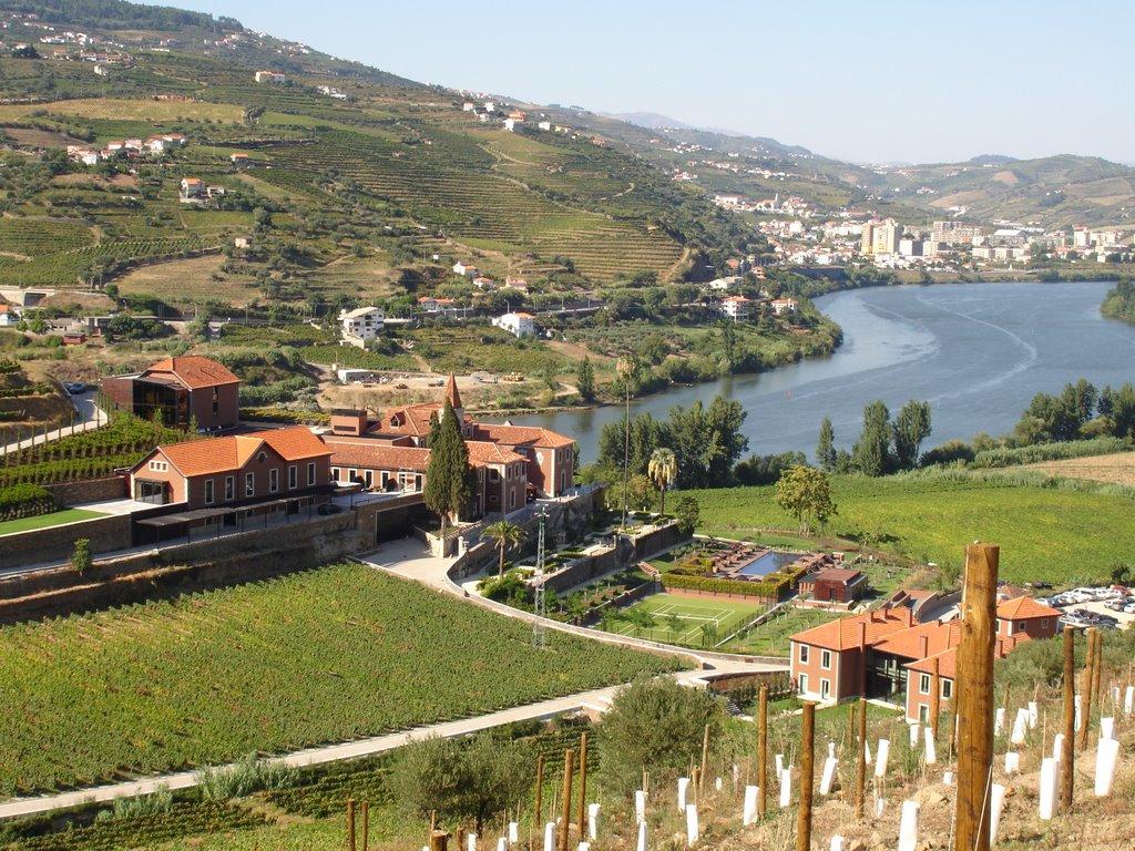 Винодельческий район Алту-Дору недалеко от города Порту
