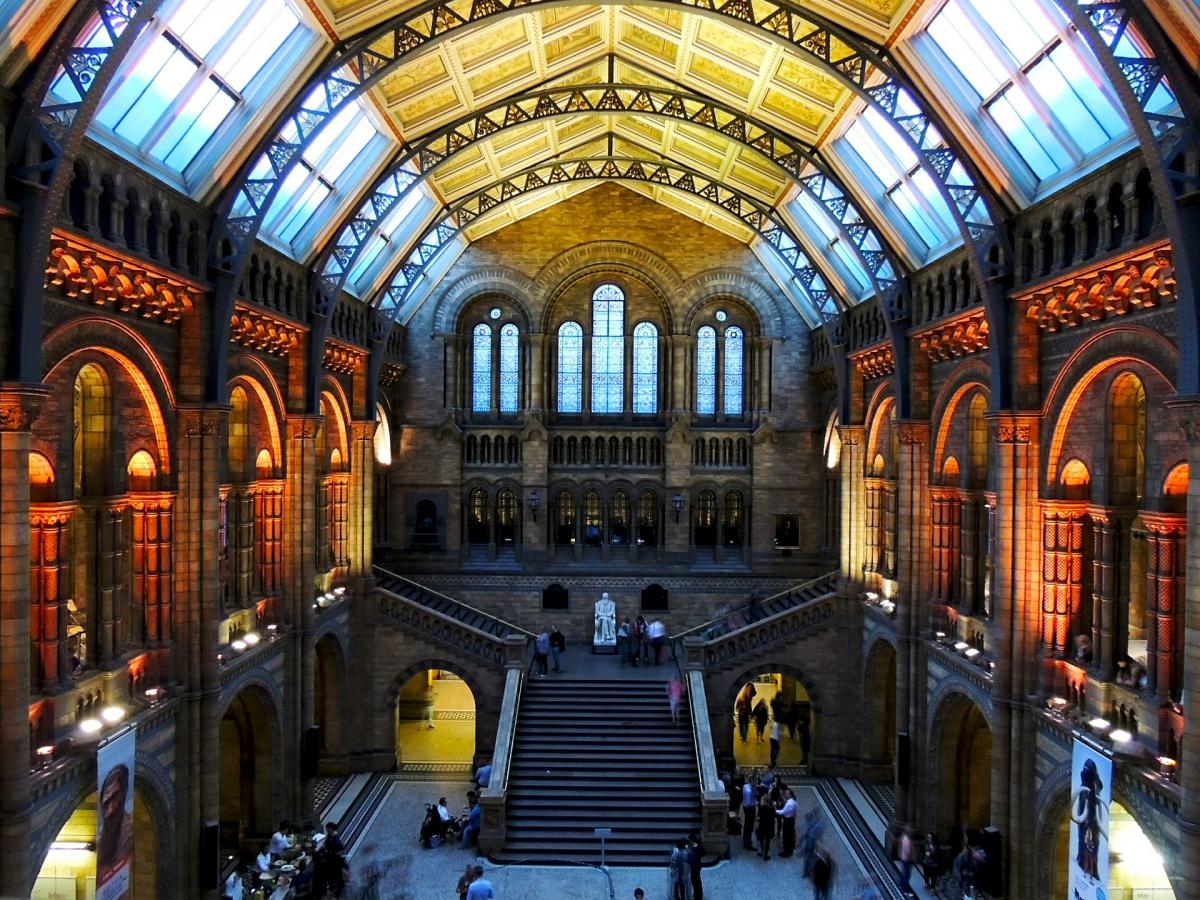 Разделы Британского музея