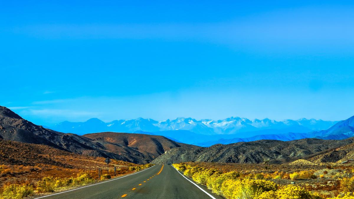 Долина Баросса