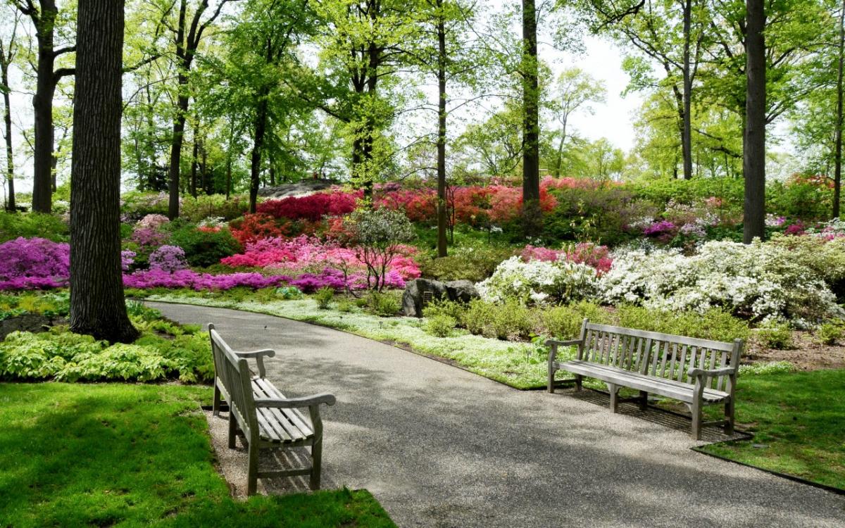 Сад Шекспира в Центральном парке