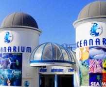 Борнмутский океанариум