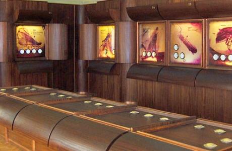 Музей янтаря в Паланге