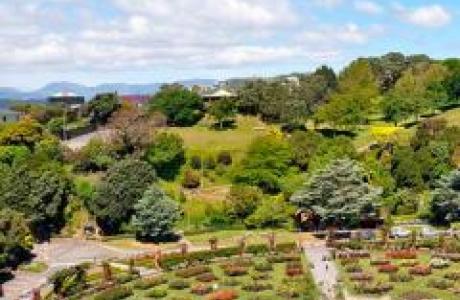 Ботанический сад Веллингтона