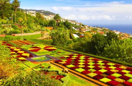 Ботанический сад «Мадейра»