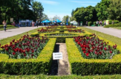 Hryshko National Botanical Garden in Kyiv