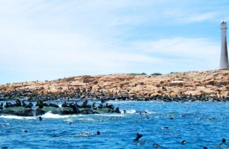 Остров Лобос