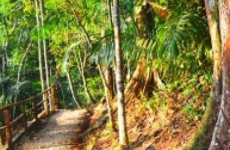 Национальный парк Метрополитан