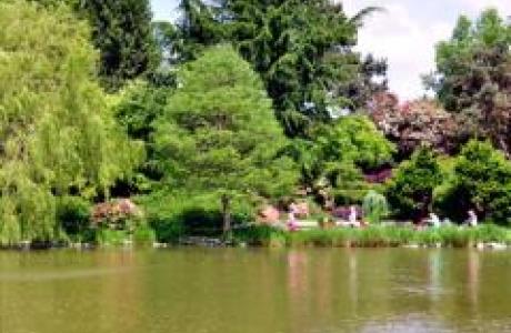 Минору парк