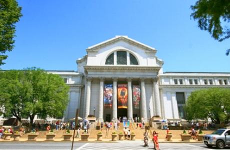 Музей естественной истории в Вашингтоне