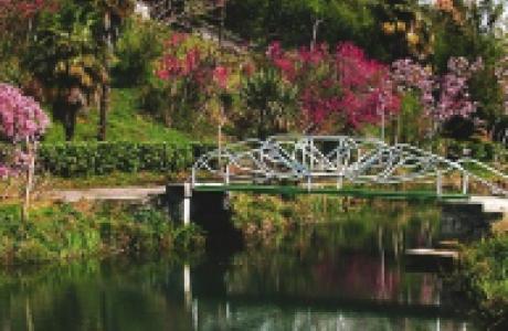 Парк Южные культуры