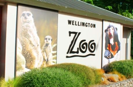 Зоопарк Веллингтона