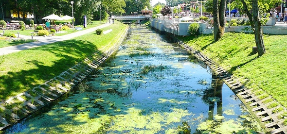 Ботанический парк в Паланге
