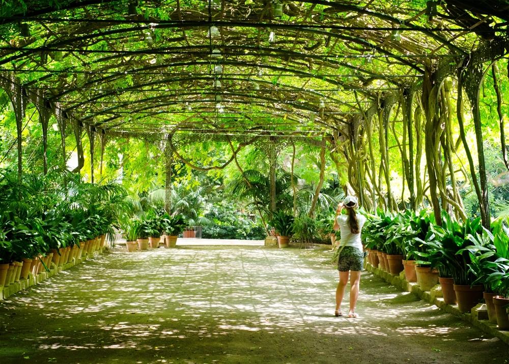 Ботанический сад в Малаге