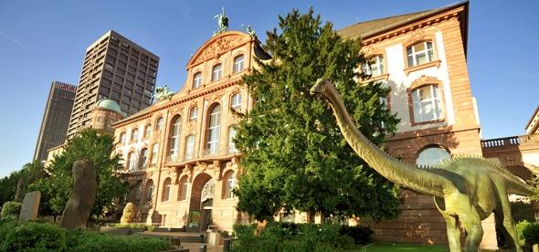 Зенкенбергский музей